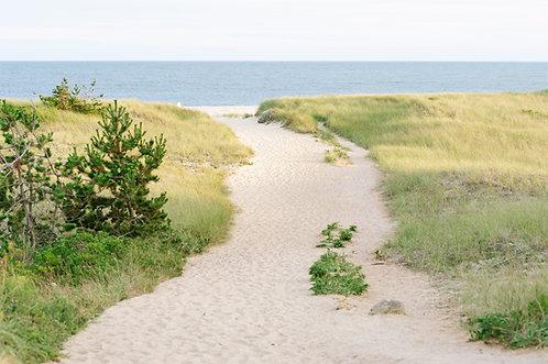 Surfside Beach Path