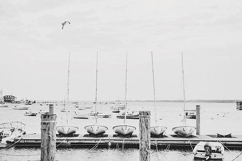 Nantucket Yacht Club Sailboats
