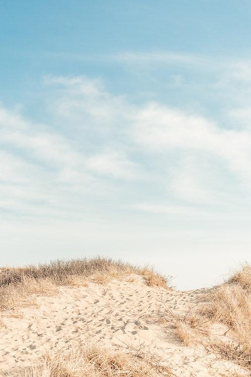 Ladies Beach Dunes