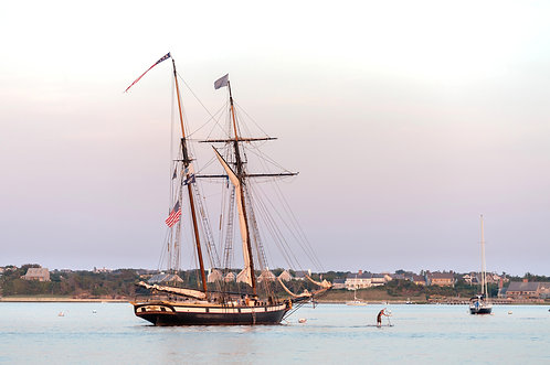 Tall Ship Lynx Paddle Boarder