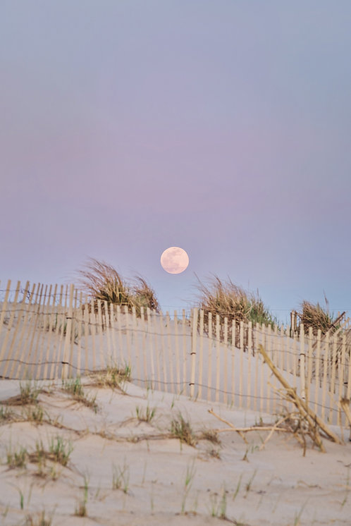 Pink Supermoon over Dunes