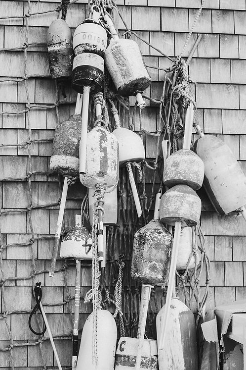 Hanging Buoys BW