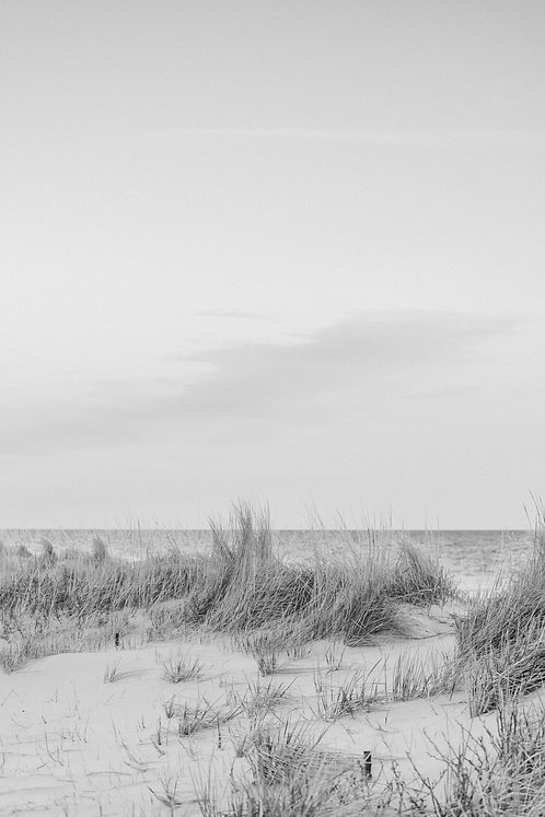 Winter Dunes 1 BW