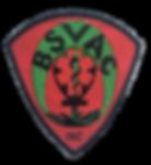 BSVAC Logo 4_edited.png