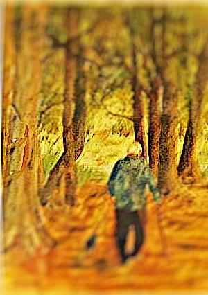 WALKING LEO