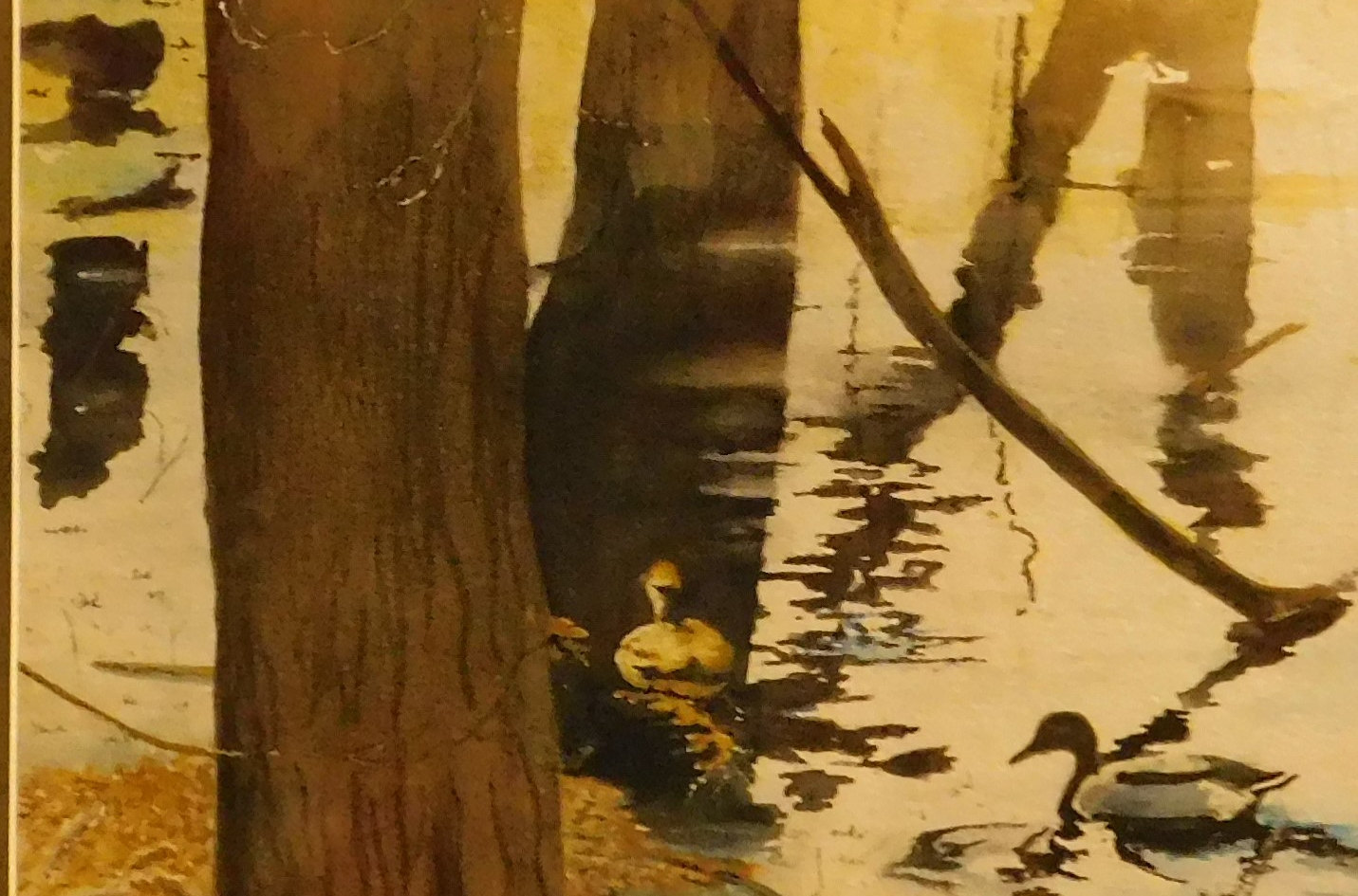 PUDDLE DUCKS Jack Keefe Watercolour 26x2