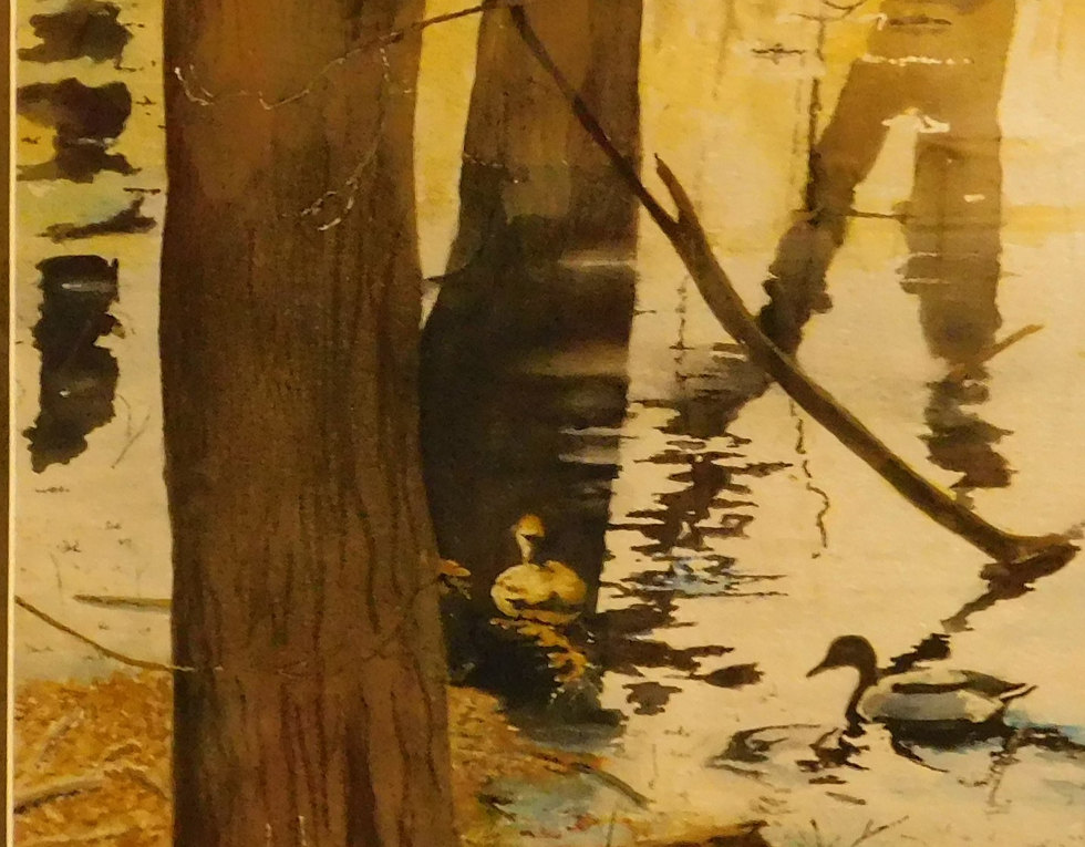 PUDDLE DUCKS Jack Keefe Watercolour 26x2