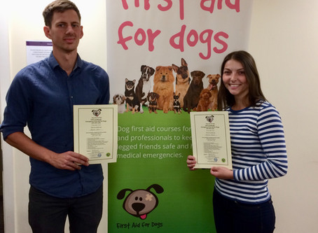 Our New Dog First Aid Certification