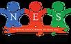Summer-Virtual-Institute-NES---logo.png