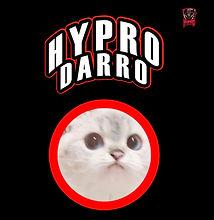 Darro Management Profile