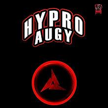 Augy Management Profile
