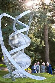 dna sculpture.jpeg