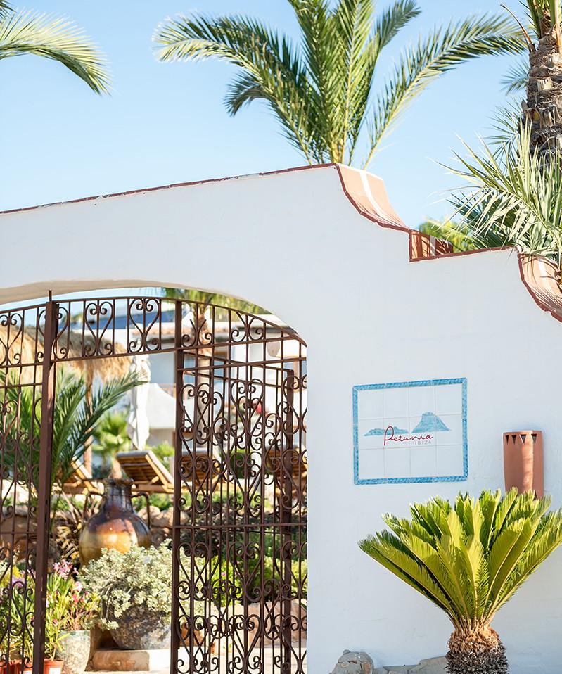 Petunia Ibiza Hotel - Welcome