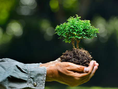 Introducing the new Lallic Partners ESG Fund