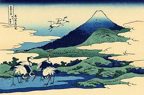 shiatsu caen, reiki caen, mdecines douces caen, médecine chinoise caen, bien-être caen