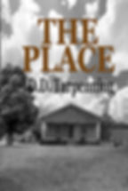 The Place book cover.jpg