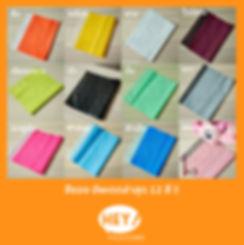สีซอง 01.jpg