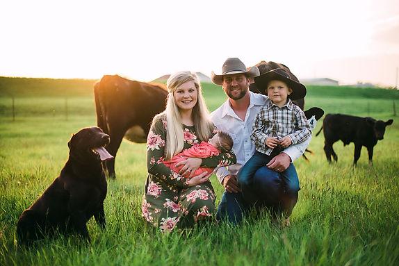 "<meta Key=""feed, livestock, family, family business, cattle, cattle feed, mineral, cattle mineral, cow, horse, goat feed, horse feed, chicken, chicken feed, rabbit, rabbit feed, dog, dog food, silver moon, feed store, farm store""/>"