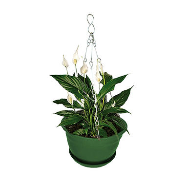 Hanging planter with Metal chain Green (set of 3 ) Minerva naturals