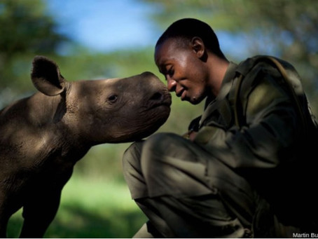 Awe-Inspiring Images Of Peace And Humanity