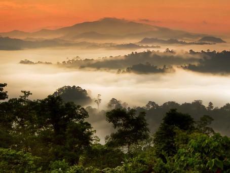 Malaysia! Spectacular. Intriguing. Epic Tea. Let's Go!