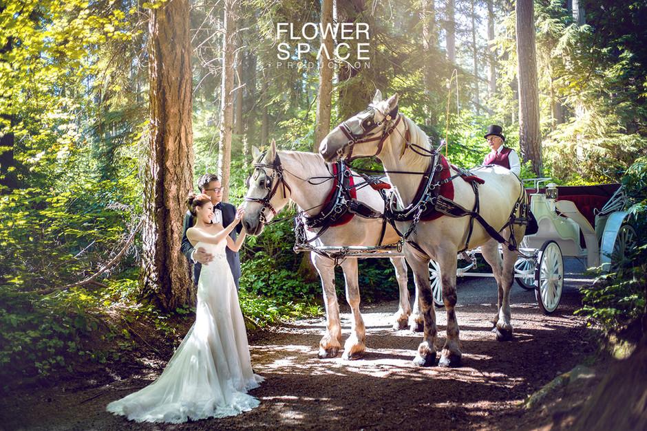 :: Pre-Wedding :: Vancouver + Victoria ::