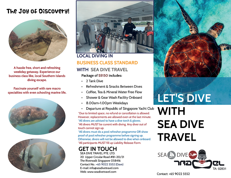 Local Dive Singapore with SEA Dive Trave