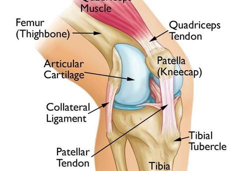 Osteoarthritis (OA) Sendi Lutut