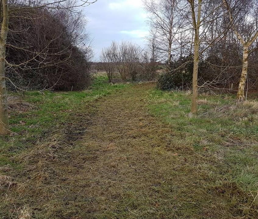 Path Clearance