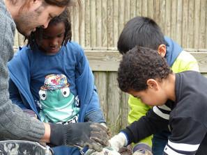 Warm welkom voor insecten op basisscholen