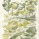 Landscape 3(1).jpg