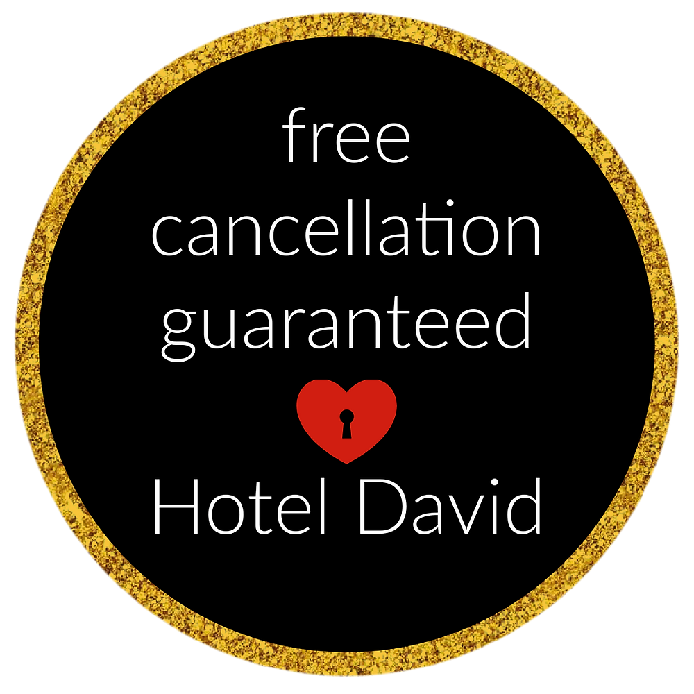 Free cancellation guaranteed at Hotel David in Florence