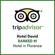 Ranked n.1 - Hotel in Florence - Trip Advisor - Hotel David