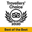Travellers' Choice 2020 - TripAdvisor - Hotel David Firenze