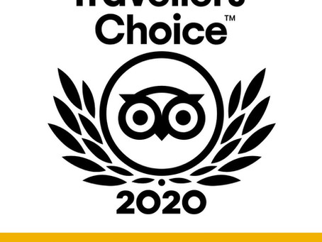 Hotel David | Firenze | TripAdvisor Award 2020 - Travellers' Choice - Best Service