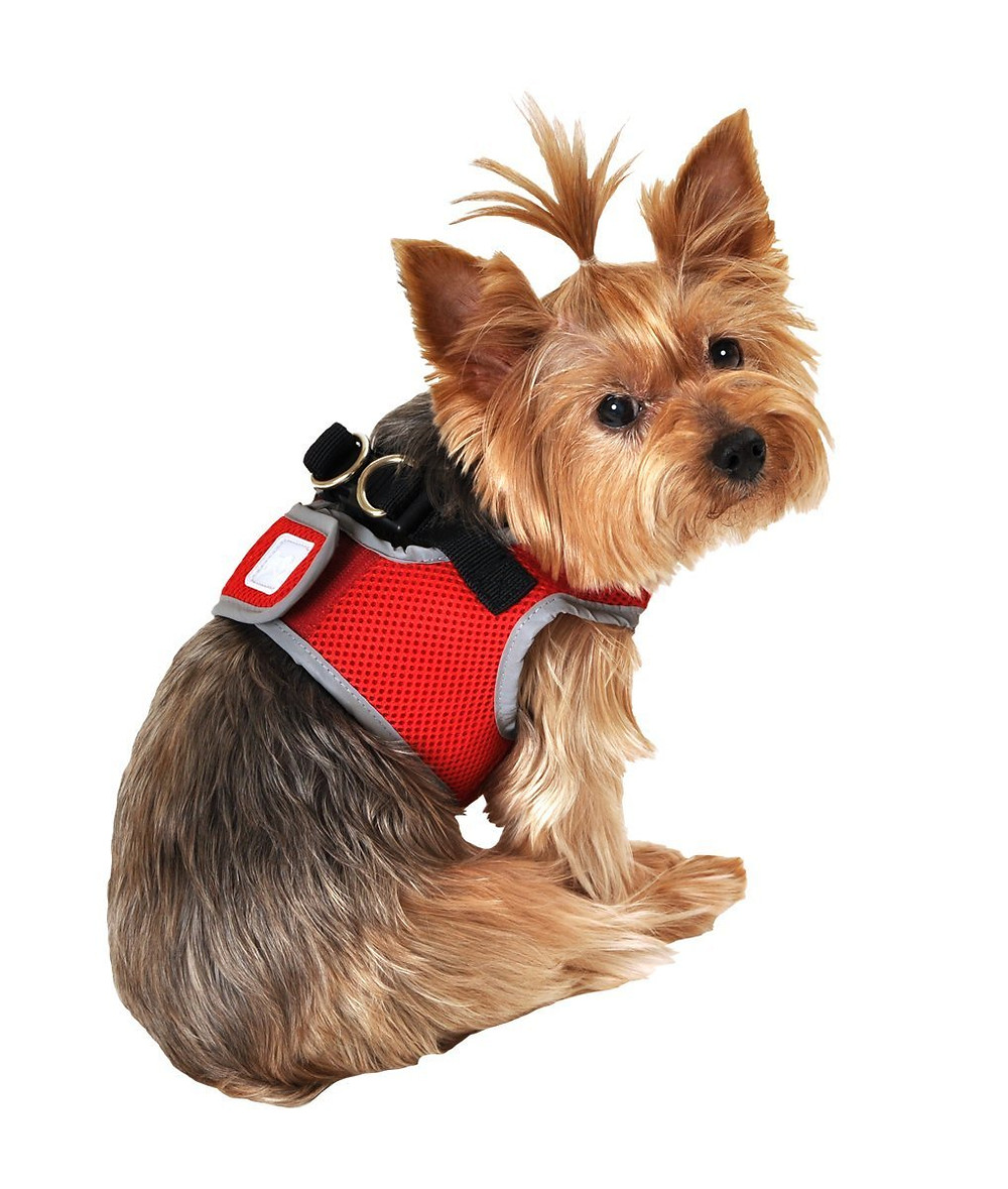 The Right Esa Vest For Small Dog