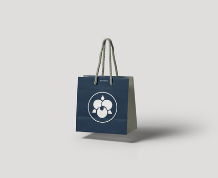 inverse bag.jpg