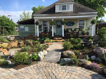 cool ponds get help from pond expert