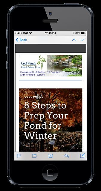 cool ponds newsletter