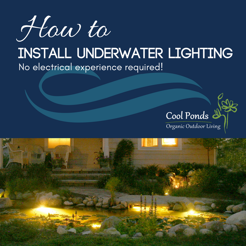 how-to-install-underwater-lighting.png