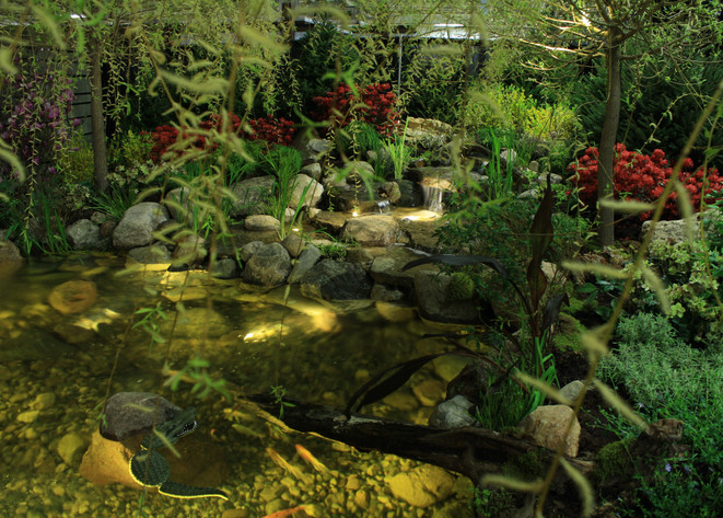 cool ponds natural landscaping for outdoor living