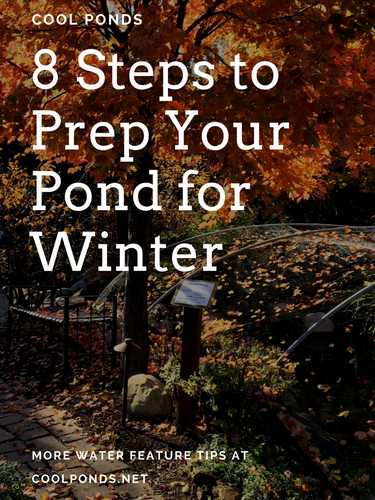 8 steps to prep your pond for witner.png