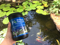 pond help with clearing pond water