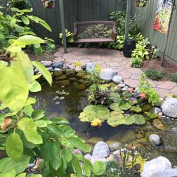 cool ponds display pond