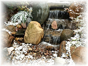 pond owner guide winter
