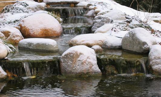 home creek - Copy.jpg