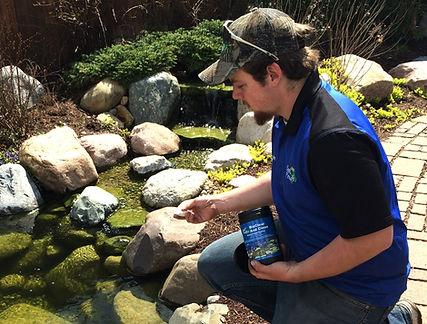 pond treatments for algae