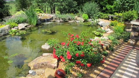 cool ponds backyard koi pond