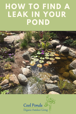 How to find a leak in your pond.png