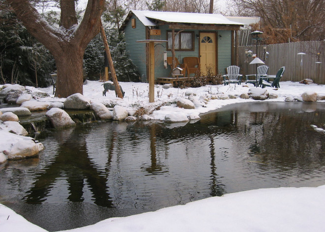 winter pond services indianapolis